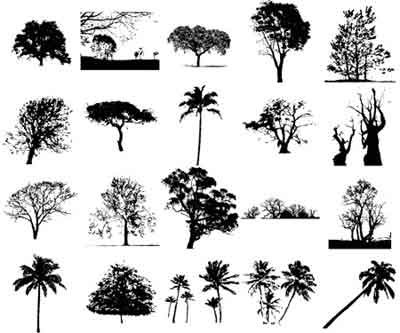 11690010455cb 30 siluetas de árboles vectorizados gratis