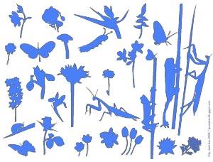 vectores-insectos.jpg