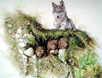 Lobo formado por piedras