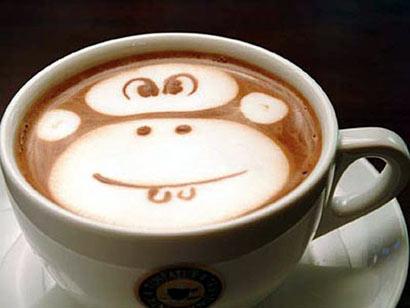 Café del animal trepador, el mono