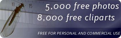 Fotos gratis para blogs, webmasters o disenos, trabajos y proyectos