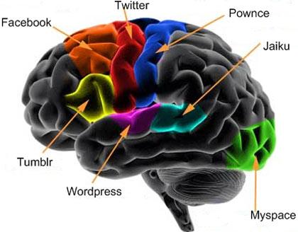 Redes sociales o web 2.0 en nuestro cerebro