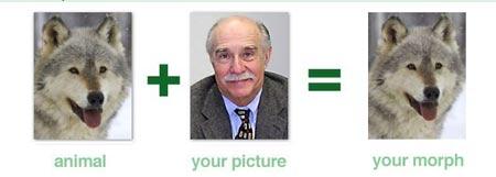 en youwild puedes cambiar tu rostro por el de tu animal favorito