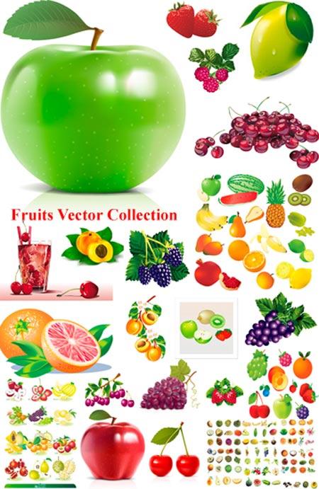 frutas vectorizadas para descargar gratis