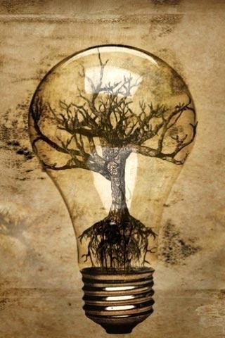 Un foco siendo alimentado por la energía natural