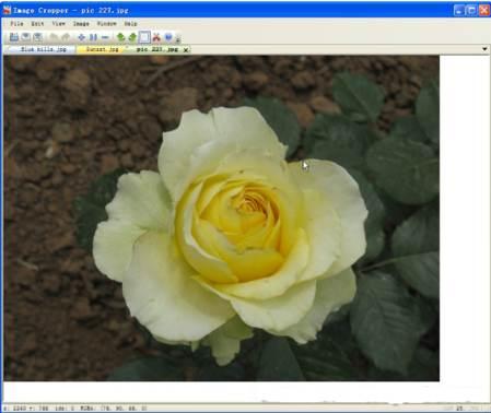 ImageCropper para recortar imágenes.